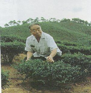 Wu Zhengyi