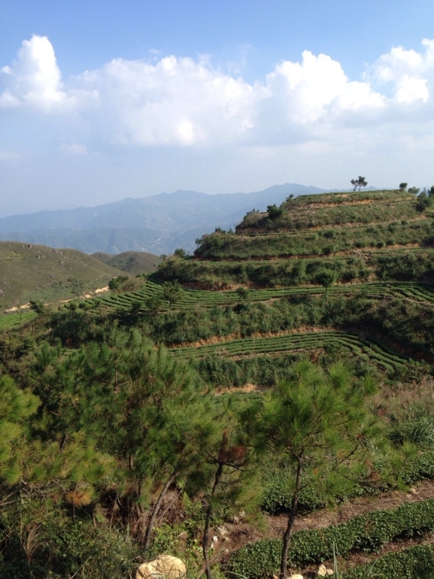 Reise nach Anxi - 3 Bilder