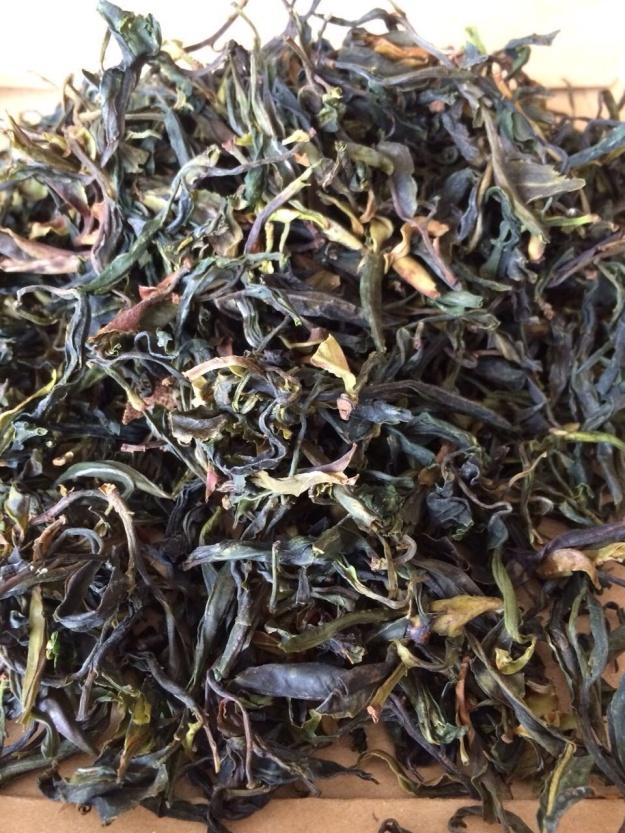 Pu Er aus wilden Gushu aus Da Xue Shan
