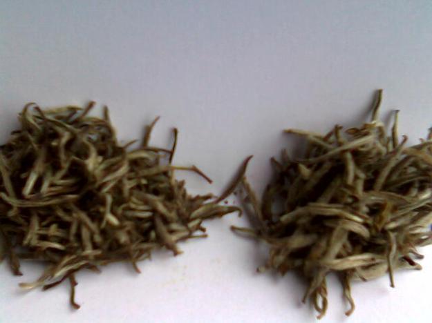 Zwei Yinzhen Baihao