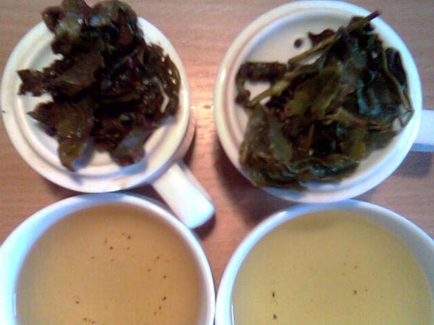 Eine Degustation mit Huang Jin Gui
