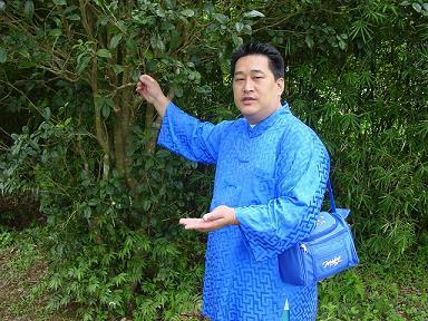 Meister Chen