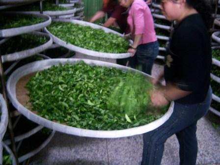 Xiaolang